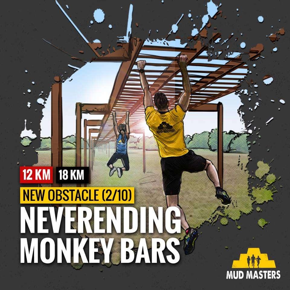 monkey bars